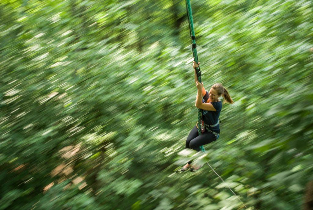 tree-climbing2